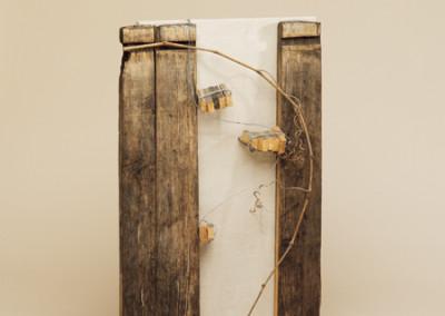 AU 33, 78 x 46 cm, Objekt zum Wein, 2004
